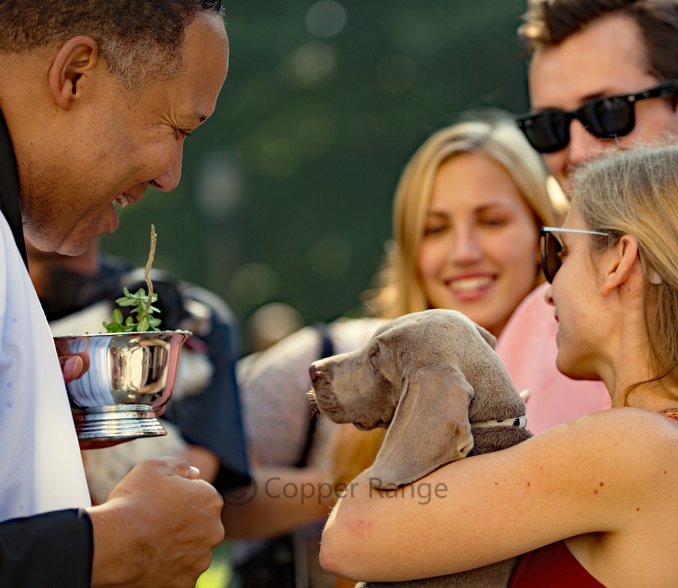 Blessing of the Animals - Washington National Cathedral